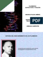 289573398-plasmidos-estructura-y-funcion