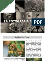 FOTOGRAFÍA MACRO.pptx