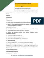 Pautas Del Trabajo Final de Investigación 2015-2-i Int. a Los Neg. Inter.