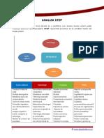 Analiza Step