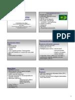Herpes_Virus_Bovino_y_Diarrea_Viral_Bovina.pdf