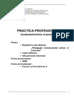 Document Practica PIPP ANUL 2