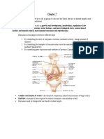 Endocrine System - Physiology