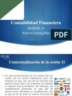 CF11 Visual