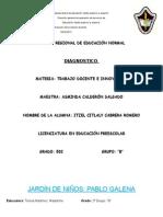 Diagnostico I. Citlaly Cabrera Romero.docx