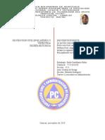 Historia de La Proteccion Civil - Paola Castellanos