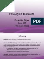 patologias2