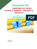 Permeabilidad en celulas animales y vegetales