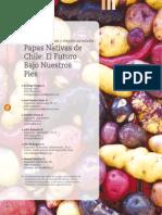 Artículo Técnico Papas Enero 2015