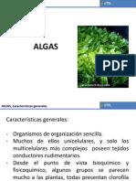 Algas_presentacion_pdf.pdf