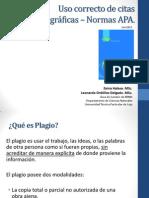 Normas_Escritura_Tecnica.pdf