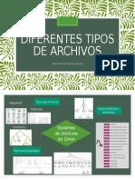 Diferentes Tipos de Archivos