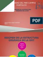 Resumen de la estructura orgánica de la OMT.