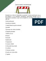 OBSTACOLELE CONCENTRARII.docx