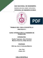 CUELLO DE BOTELLA - PRACTICA N°2