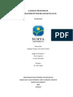 Laporan Praktikum Modul 10_stefanny Trifena_103136838229644