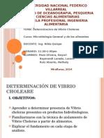 Determinacion de Vibrio Cholerae