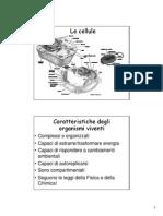 hakim biochimica.pdf