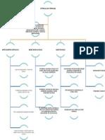 Mapa Conceptual Estimulacion Temprana