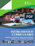 Instrumentos Curriculares Ul