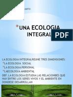 Una Ecologia Integral