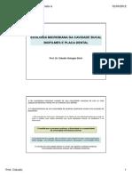 Aula-1-ecologia-e-biofilmes-1.pdf
