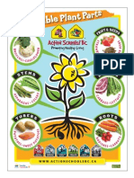 As!BC - Edible Plant Parts Poster