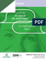 ESMO ACF Cancer de Estomago Guia Para Pacientes