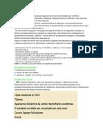 ECO 20-24 SEM.docx
