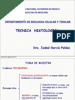 2. Técnica Histologica