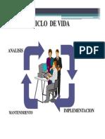 Ciclos de Vida de Los Sistemas.pdf