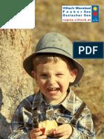 Download PDF Villach