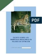 Mamiferos Mexicanos en Peligros de Extincion