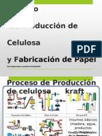 Procesodelpapel 150302211054 Conversion Gate01 (1)