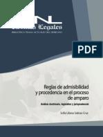 Reglas-Admisibilidad proceso de amparo.pdf