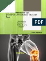 biomecanica- rodilla (1).pptx