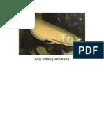 Ang Isdang Arowana2