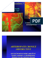 Patologie vasculara 3