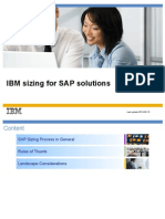 D2-3 - IBM Sizing for SAP Solutions