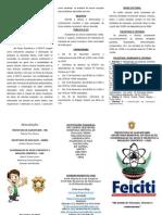 Folder Feiciti (Programação)