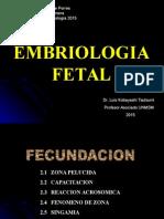 Clase 2.- Embriologia Fetal 2015