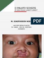 Cheilo Palato Schizis Msn