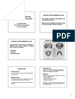 Anatomy and Histology of the Denture Bearing Areas