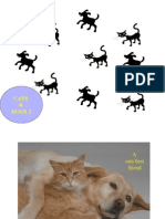 Cats & Dogs2