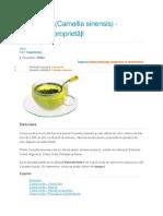 1. Ceaiul Verde, Importanța Alimentară Și Medicală - Costan Ovidiu (a)