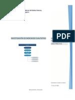 Aplicaciones Caso Práctico-Investigación de Mercado Cualitativo. Diorkis Cordero