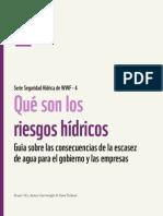 WWF_QueSonLosRiesgosHidricos.pdf