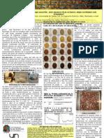Poster  Transporte de agua en granos de café durante el proceso de tostion
