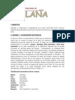 Monografia Lana Final XD!!