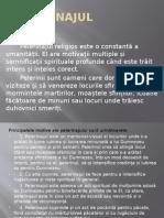 Pelerinaj (Proiect Istorie)